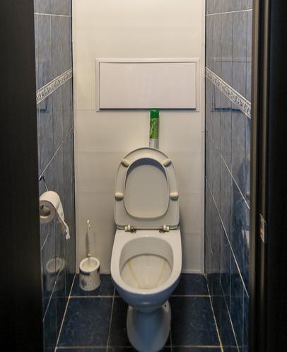 dizayn-malenkogo-tualeta-foto-10
