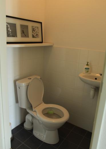dizayn-malenkogo-tualeta-foto-8