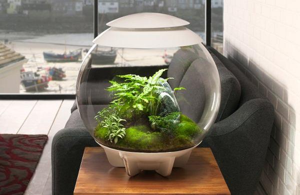 krugliy-akvarium-v-interere