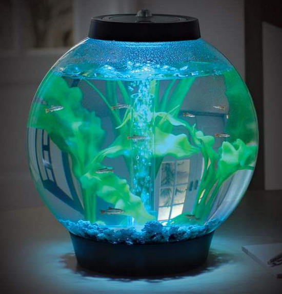 krugliy-akvarium-s-podsvetkoy