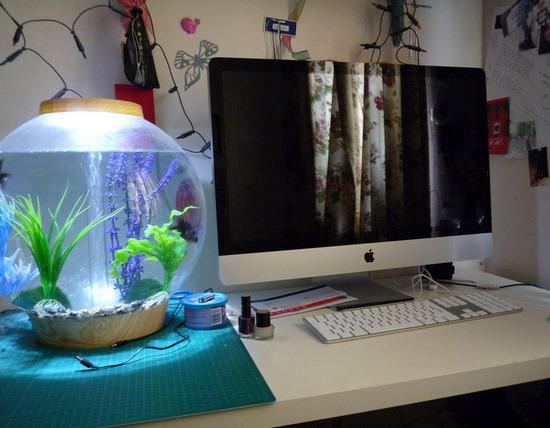 krugliy-akvarium-foto-14